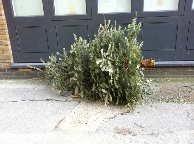 Christmas Tree Disposal Melbourne